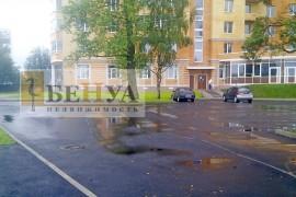 Синявино_парковка_лого