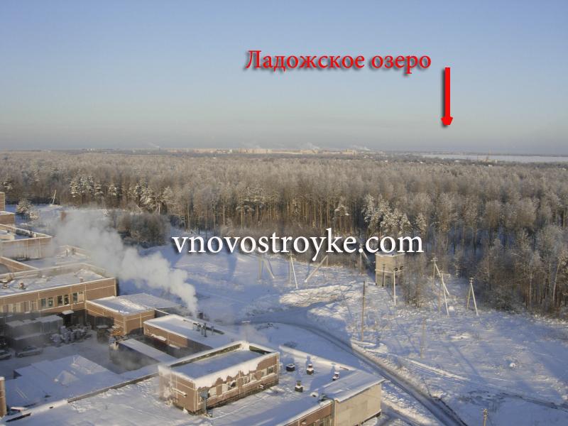 вил_синявино